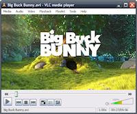 vlc_portable_small.png