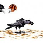 ravens bengals