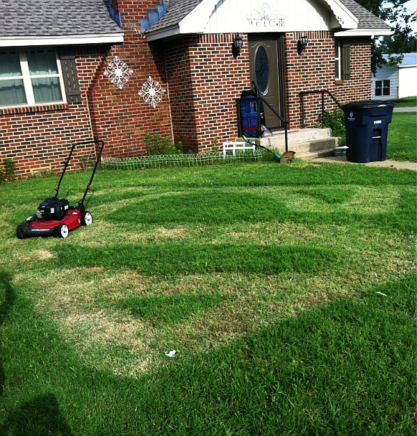 Legal ways to annoy your neighbor