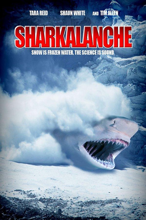 sharkn-4