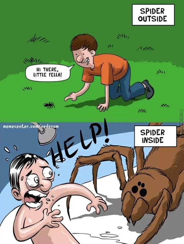 spiderrel