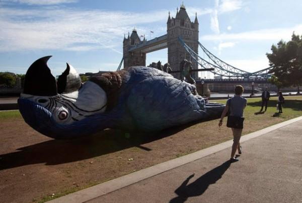 dead-parrot_London