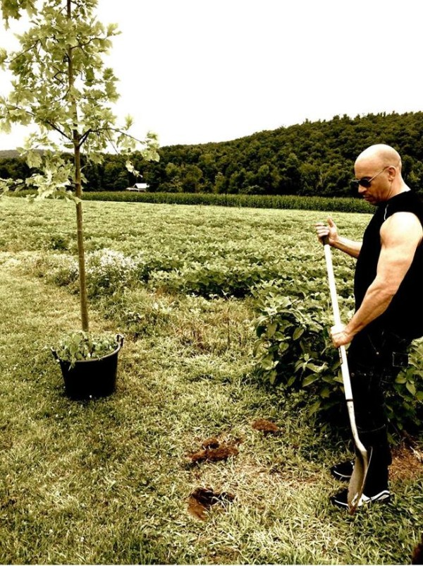 vin-diesel-plants-a-tree-for-groot