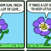 flowert