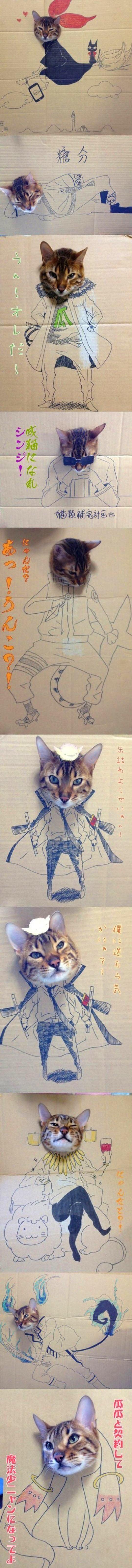 Bir Kedinin Maceraları
