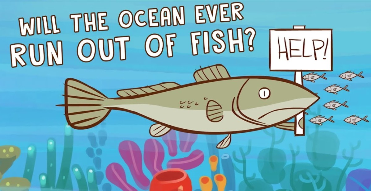 Will the Ocean Ever Run Out of Fish
