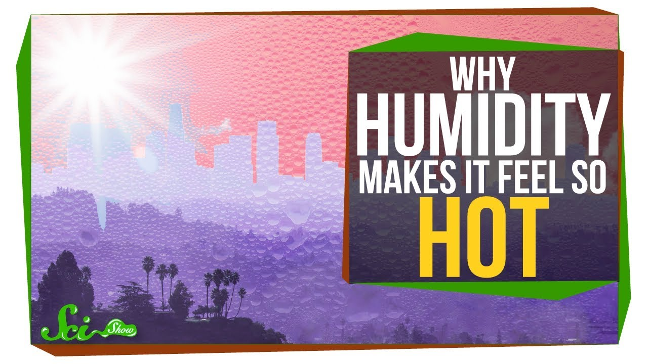 Why Does Humidity Make It Feel Hotter Science Video